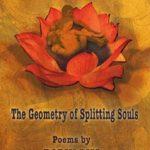 the_geometry_of_splitting_souls